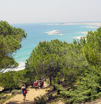 Spanish Walking Holidays Vejer de la Frontera Spain